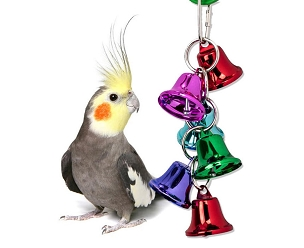 Got Bells - Small Bird Toy